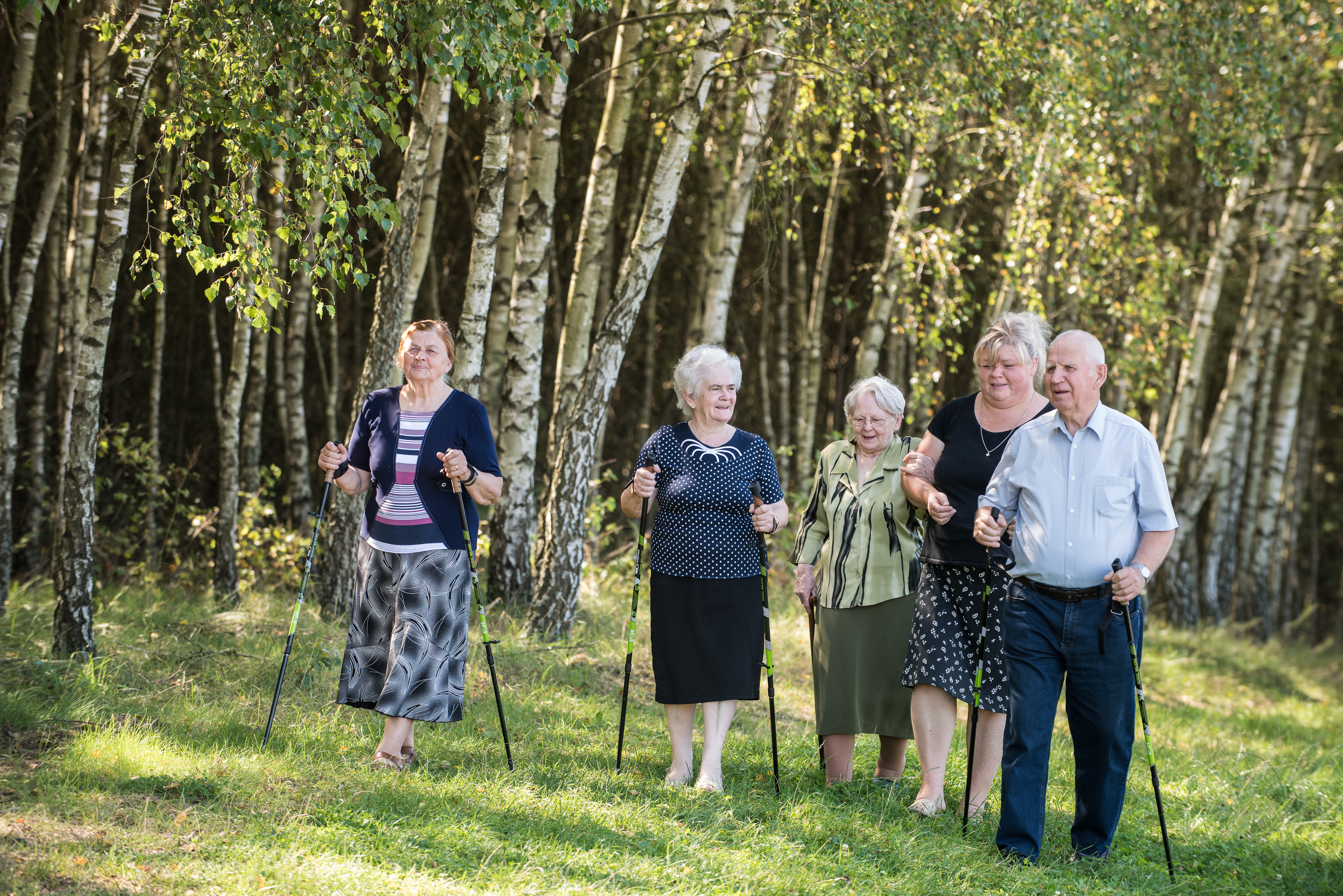 The photo presents a group of seniors walking in a birch forest.